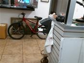 SCHWINN Mountain Bicycle RANGER